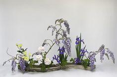 Ecole d'ikebana Ohara La Rochelle/Sud-Ouest - Rimpa Iris Glycine