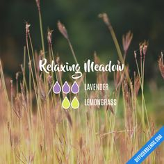 Relaxing Meadow - Essential Oil Diffuser Blend