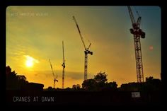 Morten Schultz took the West Hampstead cranes at sunset idea a step further