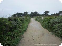 California Pacific Coast: Point Lobos trail