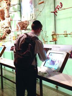 A Wonderful / Educational Morning at the Natural History Museum !