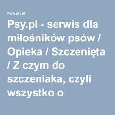 Psy.pl - serwis dla miłośników psów / Opieka / Szczenięta / Z czym do szczeniaka, czyli wszystko o socjalizacji