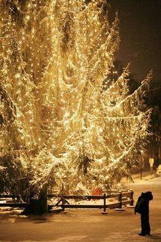 Glittering tree