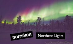 norrsken - Swedish word for Northern Lights Learn Swedish, Swedish Language, About Sweden, Symbolic Representation, Stockholm, Finland, Cool Words, Scandinavian, Northern Lights