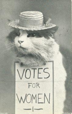 POST-1908-07 Votes for Women Cat.jpg