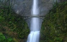 Waterfalls! Multnomah Falls,  Oregon