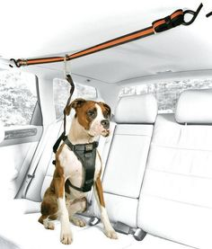 10 Useful Car Accessories for Road-Tripping with Your Pooch. Dog lovers you NEED… 10 Useful Car Accessories for Road-Tripping with Your Pooch. Dog lovers you NEED to see this… Camping Jeep, Dog Car Accessories, Wrangler Accessories, Accessories Store, Education Canine, Dog Safety, Dog Supplies, Schnauzer, Dog Care