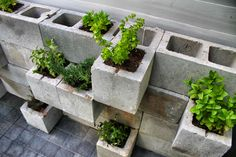 reuse cinder blocks as planters. seth, our creative director, came up with this custom design.
