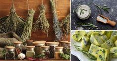 11 formas de conservar tus hierbas