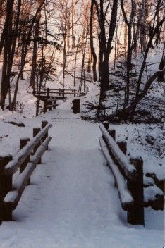 Grant Park's Seven Bridges trail in the winter. South Milwaukee, WI. (Richard S. Buse photo)