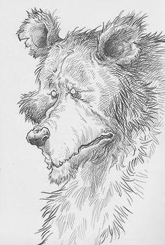 From Chris Riddell's fabulous new online Sketchbook: http://chrisriddellblog.tumblr.com/
