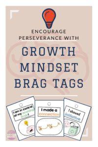 Growth Mindset Brag Tags blog post with Freebie