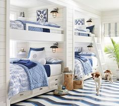 Built-in bunks, drawers under, small shelf on inside wall for drink/book, painted wood floors - Avalon Indoor/Outdoor Sconce Bunk Bed Rooms, Bunk Beds Built In, 4 Bunk Beds, Twin Beds, Home Bedroom, Bedroom Decor, Kids Bedroom, Bedroom Ideas, Guy Bedroom