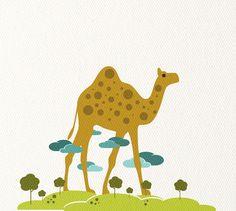 camel (no toe, haha)