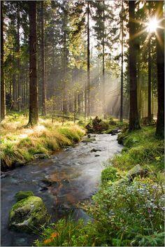 """Bild von Dave Derbis - """"Bode im Harz"""""""
