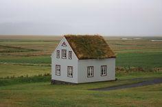 Quando si dice avere una casa ecologica... #buongiorno green dall'#islanda!
