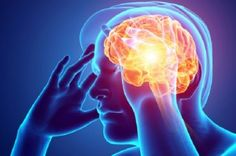 Brain food isn't always a good thing. Sleep deprivation actually causes the brain to feed off of neurons and synaptic connections, a new study published in the Journal of Neuroscience says. Low Cortisol Levels, Brain Sleep, Congenital Adrenal Hyperplasia, How To Stay Awake, Neurons, Sleep Deprivation, Your Brain, Stress Relief
