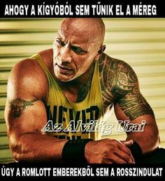 Dwayne Johnson, Fast And Furious, Love Life, Quotations, Tank Man, Funny Pictures, Positivity, Romantic, Humor