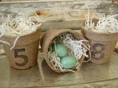 Numbered Peat Pot Nests