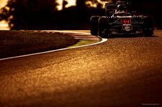 "McLaren Honda MP4-31, Japanese Grand Prix,  2016 McLaren on Twitter: ""The stunning shades of Suzuka thanks to @F1Photographer, Darren Heath"" Hamilton, Japanese Grand Prix, Videos, F1, Twitter, Honda, Action, Shades, Sports"