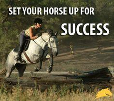 """Set your horse up for success."" - Pat #Parelli Check out Geneviève Benoit, Licensed Parelli 3-Star Instructor at www.vifargent.com"