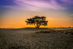 Sandrise by Bart Verbrugge on 500px