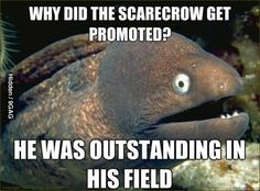 Why did the scarecrow get promoted?dull death..can't die laughing! ;(