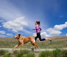 #lovingdogs #runningdog #vetboutique Running with your dog is healthy for you and for your dog as well.