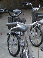 CPNS Formasi: Sepeda alat transportasi murah, sehat, dan berpres...