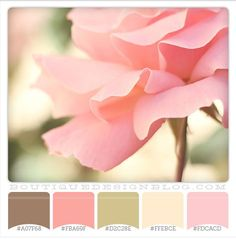 color palette aesthetic/ inspiration for sweet home Bid Day, courtesy of Design Seeds - {Perfectly Pink color scheme with soft pink, brown and green Color Palette For Home, Colour Pallette, Color Palate, Pink Palette, Coral Color Schemes, Color Combinations, Decoration Inspiration, Color Inspiration, Design Seeds