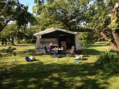 Op de camping in de Beemster, in de fruitgaard - mei 2014