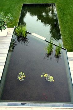 Photo Outdoor Water Features, Pool Water Features, Water Features In The Garden, Landscaping Supplies, Modern Landscaping, Backyard Landscaping, Landscaping Software, Pond Design, Landscape Design