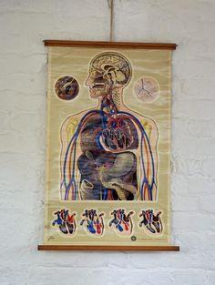 Vintage St. Johns ambulance medical chart   signed J Teck