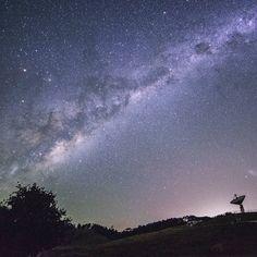 Galactic kiwi hunting