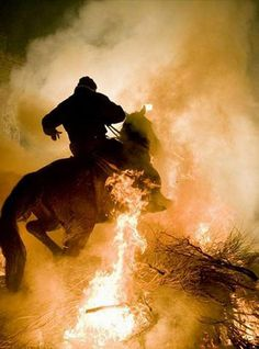 Horses ride through fire to mark Spanish festival of patron saint of animals Story Inspiration, Writing Inspiration, Character Inspiration, Fire Horse, The Witcher, Dragon Age, Legend Of Zelda, Storyboard, Fairy Tales