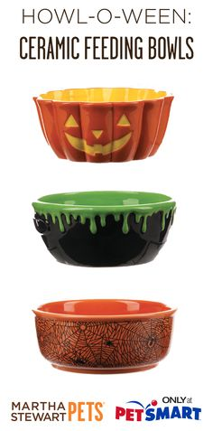 Get your pet ready for #Halloween with these #marthastewartpets ceramic feeding bowls. Will you pick the Jack O'Lantern, Witch's Cauldron, or Spiderweb design?