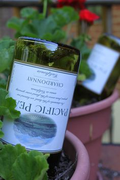 Green Garden Hack Simply fill the wine bottle with water, quickly flip it upside down and push the open end of the bottle into the soil. This simple trick can save you a few (and sometimes several) days of watering. Watering Bulbs, Self Watering, Organic Gardening, Gardening Tips, Bucket Gardening, Organic Farming, Reuse Wine Bottles, Green Garden, Big Garden