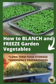 How to Safely Freeze Vegetables - Peas, Beans, Carrots - - How to blanch and freeze garden peas - quick and easy! When you are harvesting peas, preserve some for winter. Everything you need to know about blanching. Freezing Vegetables, Freezing Fruit, Canning Vegetables, Frozen Vegetables, Fruits And Veggies, Canning Food Preservation, Preserving Food, Canned Food Storage, Long Term Food Storage