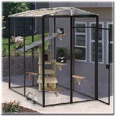 Cat Enclosures – A Haven for Cats :: Info-On-Cats.com