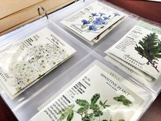 Five Ways to Creatively Organize Seed Packets.  Love the idea of using a photo album.