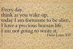 Dalai Lama                                                                                                            Dalai Lama Quote             by        StarsApart      on        Flickr