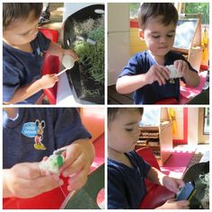 Discover and Explore dinosaur eggs by Teach Preschool