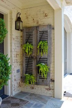 old shutters with ferns ~ great idea for backyard fence. old shutters. old shutters wit Small Space Gardening, Small Garden Design, Shutter Projects, Shutter Decor, Shutter Door Ideas, Shutter Shelf, Backyard Fences, Backyard Ideas, Garden Ideas