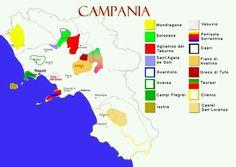 Italian wine regions : Campania