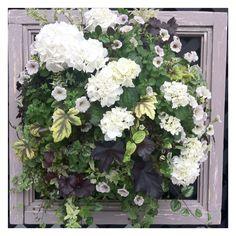 2011 International Roses & Gardening  特別賞 Green Garden, Garden Pots, Green Flowers, Colorful Flowers, Container Flowers, Hanging Baskets, Container Gardening, Floral Arrangements, Floral Design