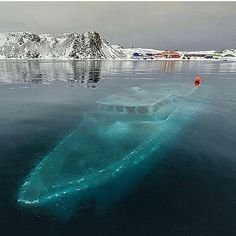 Frozen Ship in Antarctica | via @mehmetdzn