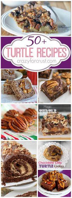 50 Turtle Recipes | crazyforcrust.com | It's a collection of caramel, pecans, and chocolate galore!