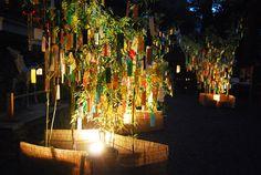 京都の四季 貴船神社 七夕笹飾りライトアップ: 京都を歩くアルバム Kyoto Japan