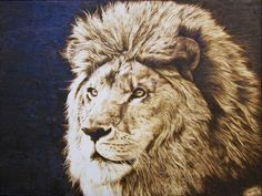 pyrography The Lion