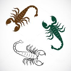 Vector image of an scorpion by yod67 on @creativework247